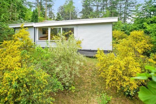 Få dit nye sommerhus på Blanksøvej 24, Mogenstrup
